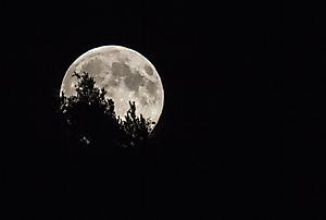 Levé de lune sur les Vosges_1