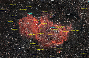 IC1848 _2
